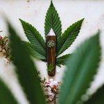 Image for the Tweet beginning: #cannabiscommunity #marijuana #cannabis 'Hohodza Band'