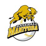 Baseball Manitoba Pitch Count - Manitoba Baseball Association, Inc. (Sports) https://t.co/2iSg5XaLG6