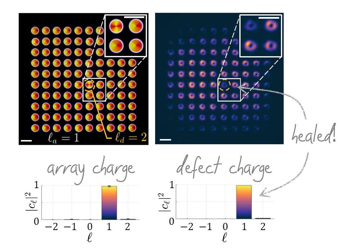 iit - Vectorial Nano-imaging Research Line