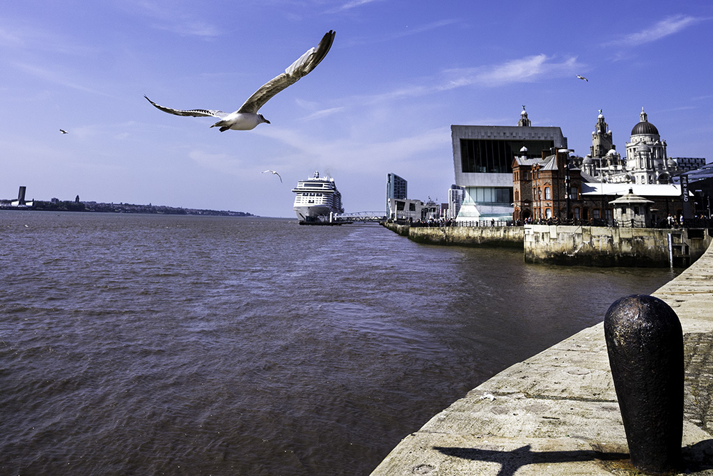 Flying visit  #CruiseLiverpool #RiverMersey #Liverpool #Tourism #Culture #Heritage #ThePhotoHour #Photography https://t.co/xdkvKGy5zq
