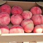 一部の福島県民も知らなかったこと?お盆頃まで桃が安く買える手段がある!