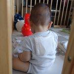 アベノマスクの新たな使い道!隙間に保冷剤を入れて赤ちゃんに背負わせる方法が話題!