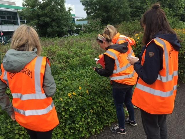 Connecting with nature   @TidewayLondon volunteers were at @CodyDock to partake in wildlif…