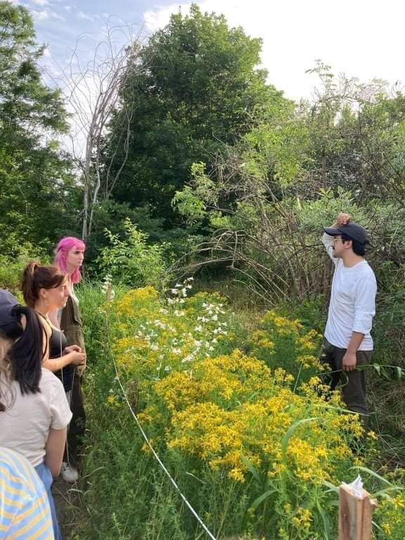 test Twitter Media - Campus continues to be active as WILD Wesleyan has spent much of July trimming back overgrown bluestones pathways to make the area walkable. Also, their harvest has included black cherries, red currants, serviceberries, mint, St. John's wort, and wood nettle. https://t.co/dQ6iovDiKK