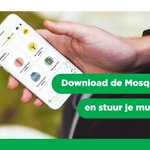 Image for the Tweet beginning: Download nu de #Mosquito Alert