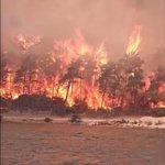 Image for the Tweet beginning: Ciğerlerimizi yakan yangınları büyük bir
