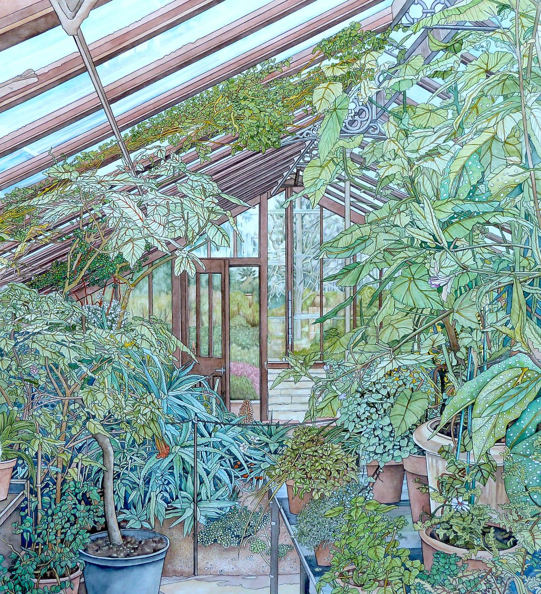 'Chelsea Physic Garden: A Year in the Life' - a new exhibition by @BanksideGallery - artists from the @RWS_Art and @re_printmakers. Pictured: 'Part of the Glasshouse', Meg Dutton RE. Thurs 12 - Mon 30 August ow.ly/Iewy50FBkHq #exhibition #artists #watercolour #printing