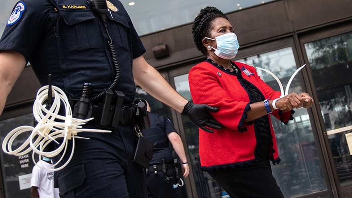Rep. Sheila Jackson Lee is Third Member of Congress Arrested During Voting Rights Protests on Capitol Hill