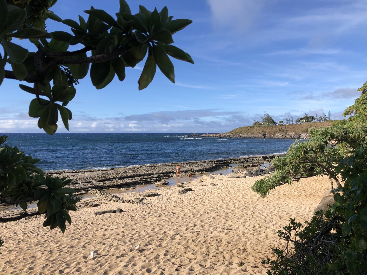 test Twitter Media - North shore warm and breezy. #CMWeather #Maui #NorthShore #WynnServiceTag'sSurf #Ocean #Beach #MagicalMaui #MauiNokaOr https://t.co/hXUSFgNmTk