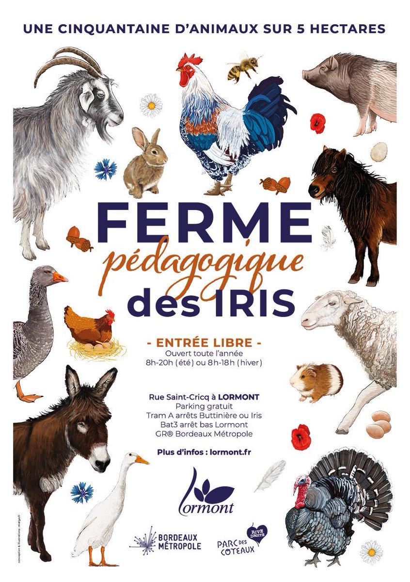 Tout l'été, la ferme pédagogique des Iris à #Lormont vous accueille de 8h à 20h. Venez rencontrer la cinquantaine d'animaux et les soigneurs qui œuvrent chaque jour pour leur bien-être ! #ferme #nature #environnement #animauxdelaferme #animaux #idéesortie #Gironde https://t.co/GiquTnDSK1
