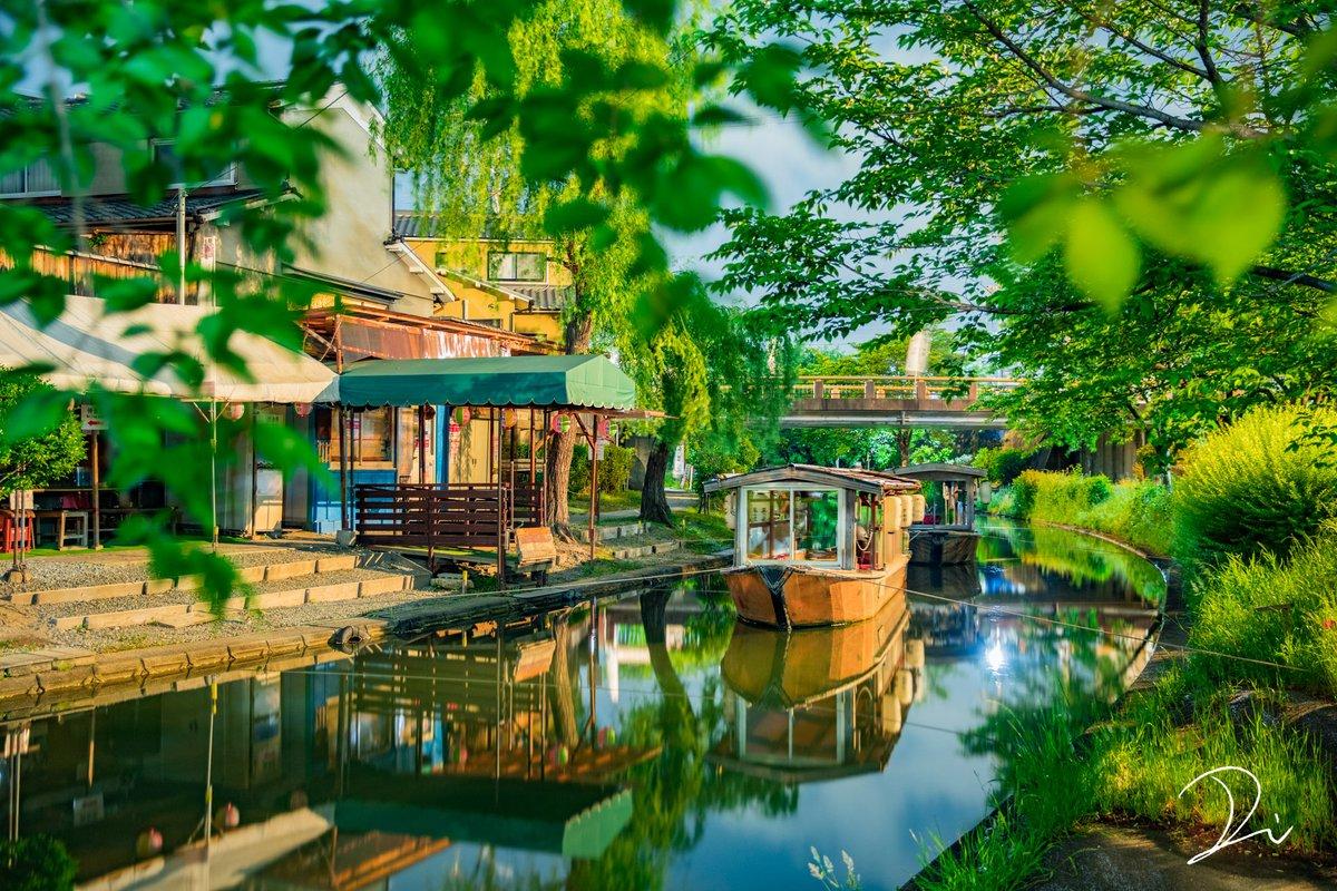 修学旅行シーズンもいいけど?夏の京都の濃緑がいい!