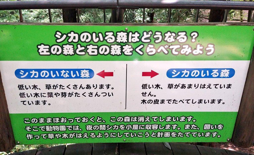 これは素晴らしい動物園の展示では?鹿のいる森といない森を比較している!
