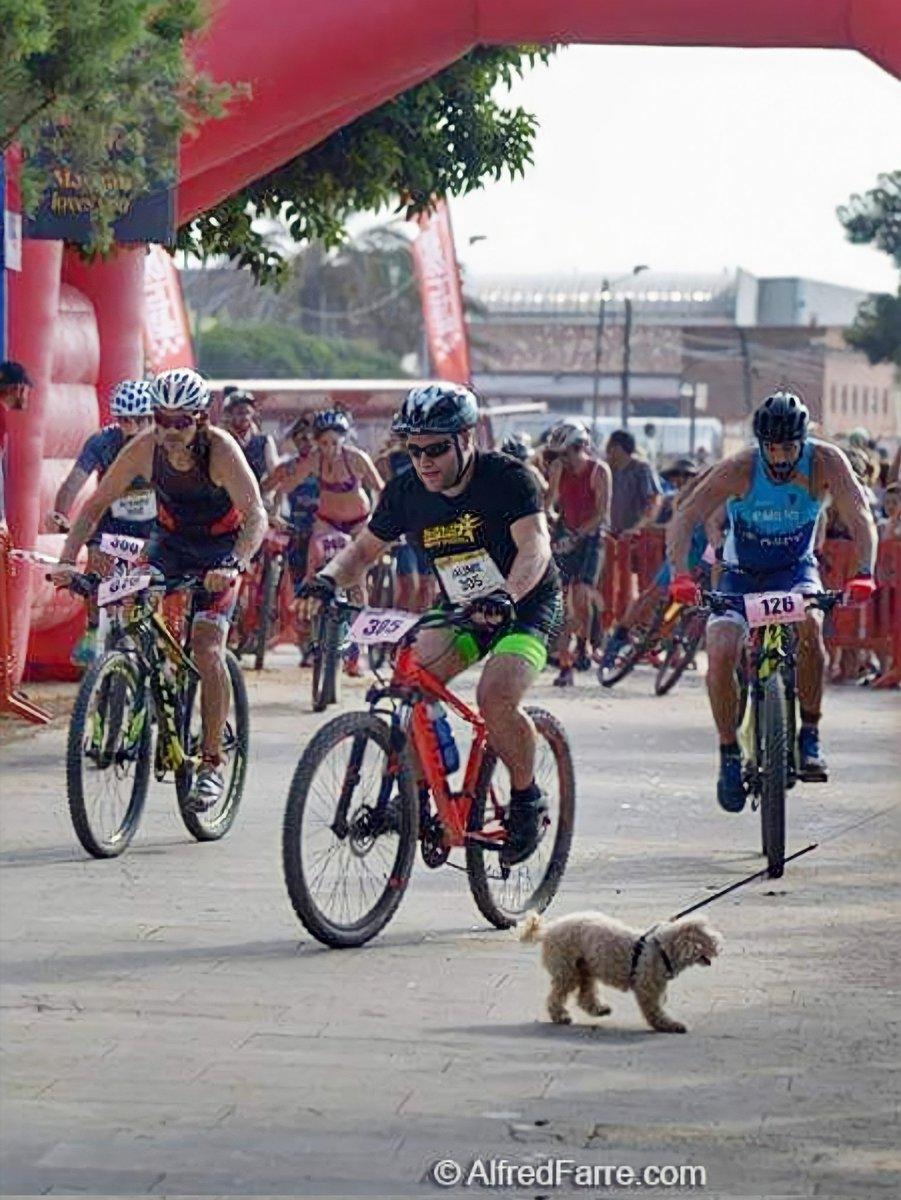 17a La Triatló popular de Malgrat de Mar 2018 #malgratturisme #maresme #catalunyaexperience #cat #maresme #bcn #barcelona #holidays #dog #triatlo #triathlon #bike  📷@alfredfarre