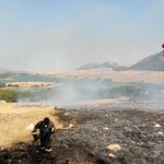 Image for the Tweet beginning: Incendi, notte di fuoco a