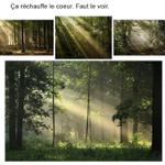 Image for the Tweet beginning: Comme c'est beau de tomber