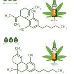Image for the Tweet beginning: #cannabiscommunity #marijuana #cannabis NM needs