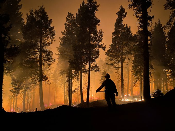 A firefighter looks out at a burning forest on the Dixie Fire.