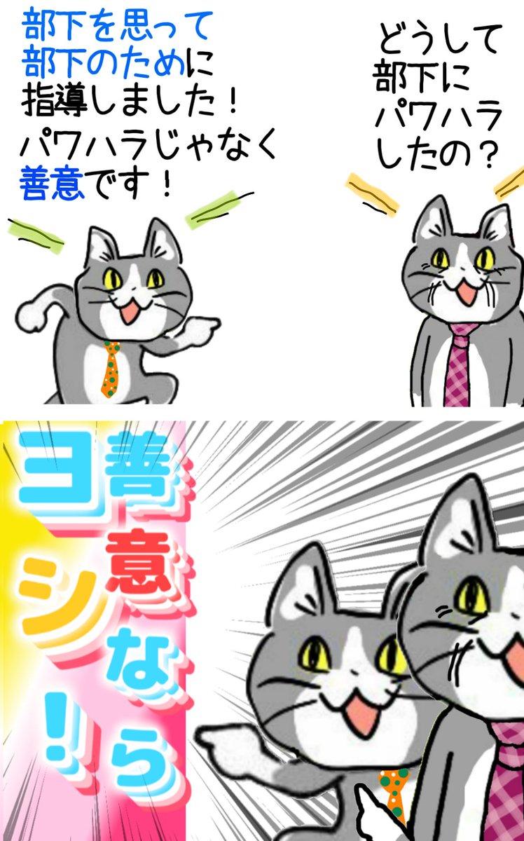 これが厄介なパワハラだ!完全な善意と正義感でパワハラする猫に罪悪感は無い!