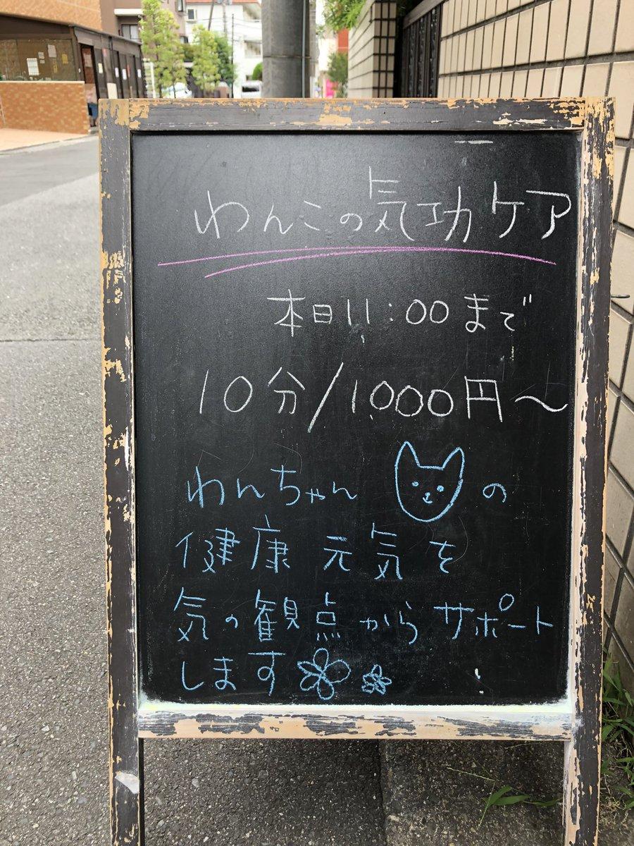 todaiya_m photo