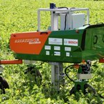 Image for the Tweet beginning: Farming robots collecting plant breeding