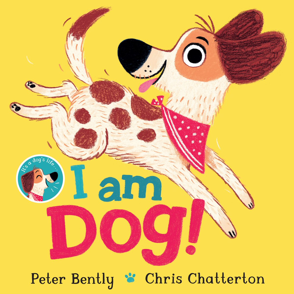 Happy Book Birthday to two top of their gamers @ChrisChatterton & @PeterBently - this book is a joy to read and absorb all the glorious visual detail 🐶😍🐶 https://t.co/DQhEvkKLAG