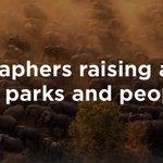 Image for the Tweet beginning: Over 170 wildlife photographers, hundreds