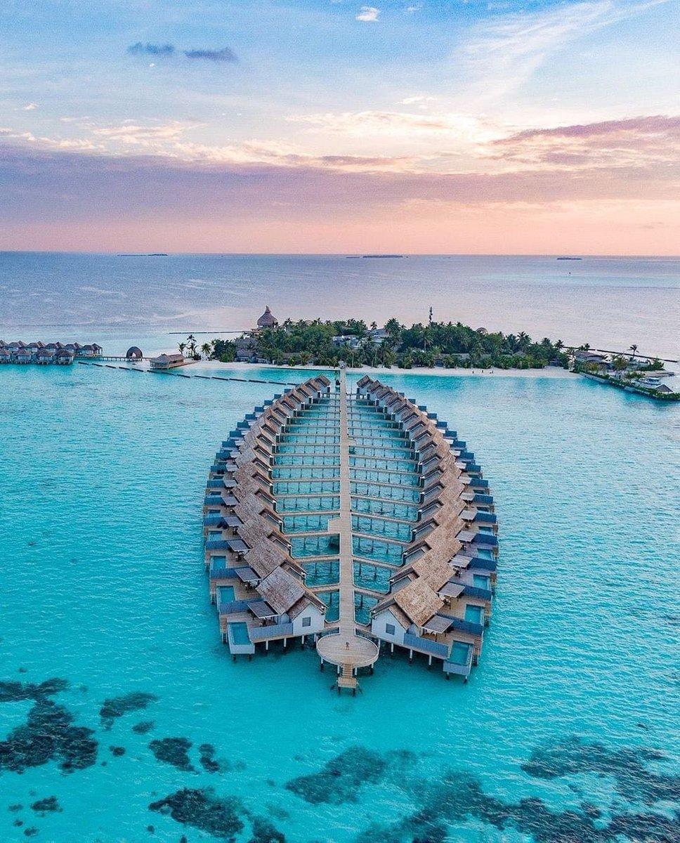 RT @othingstodo: Maldives ❤️  https://t.co/NMuL36irnK