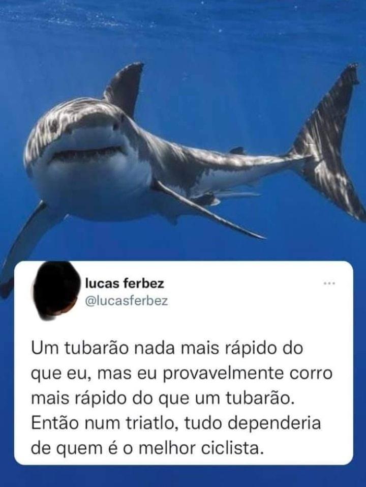 RT @sabedoriabixo: https://t.co/0P5N1br4ZC