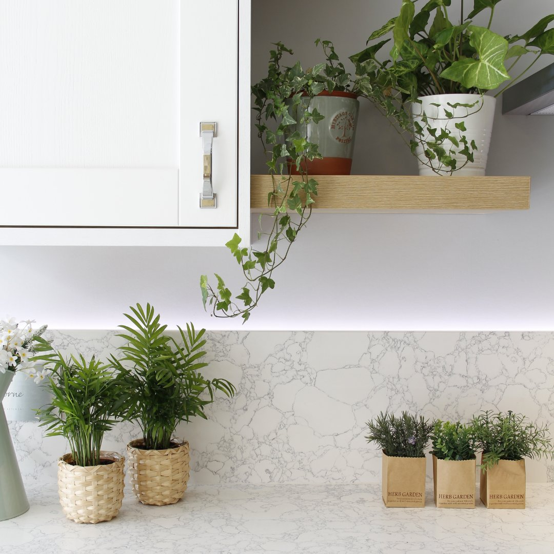 Having problems choosing the right houseplants for your kitchen? Read our helpful guide to healthy kitchen plants - bit.ly/3y2CIOm