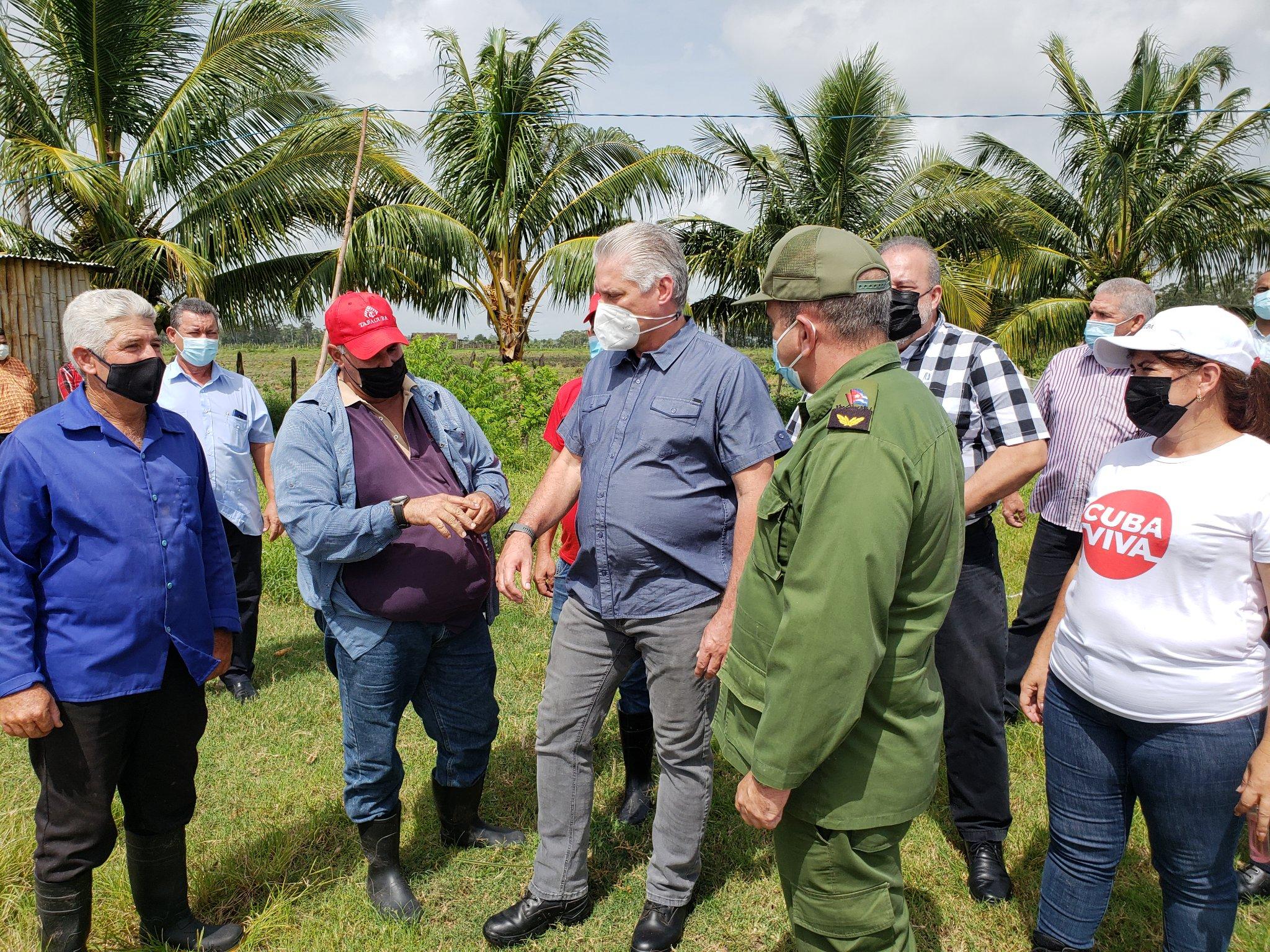 Evalúan Presidente y Primer Ministro de Cuba afectaciones de Ida en Pinar del Río y la Isla de la Juventud (+ Fotos, Tuits y Video)