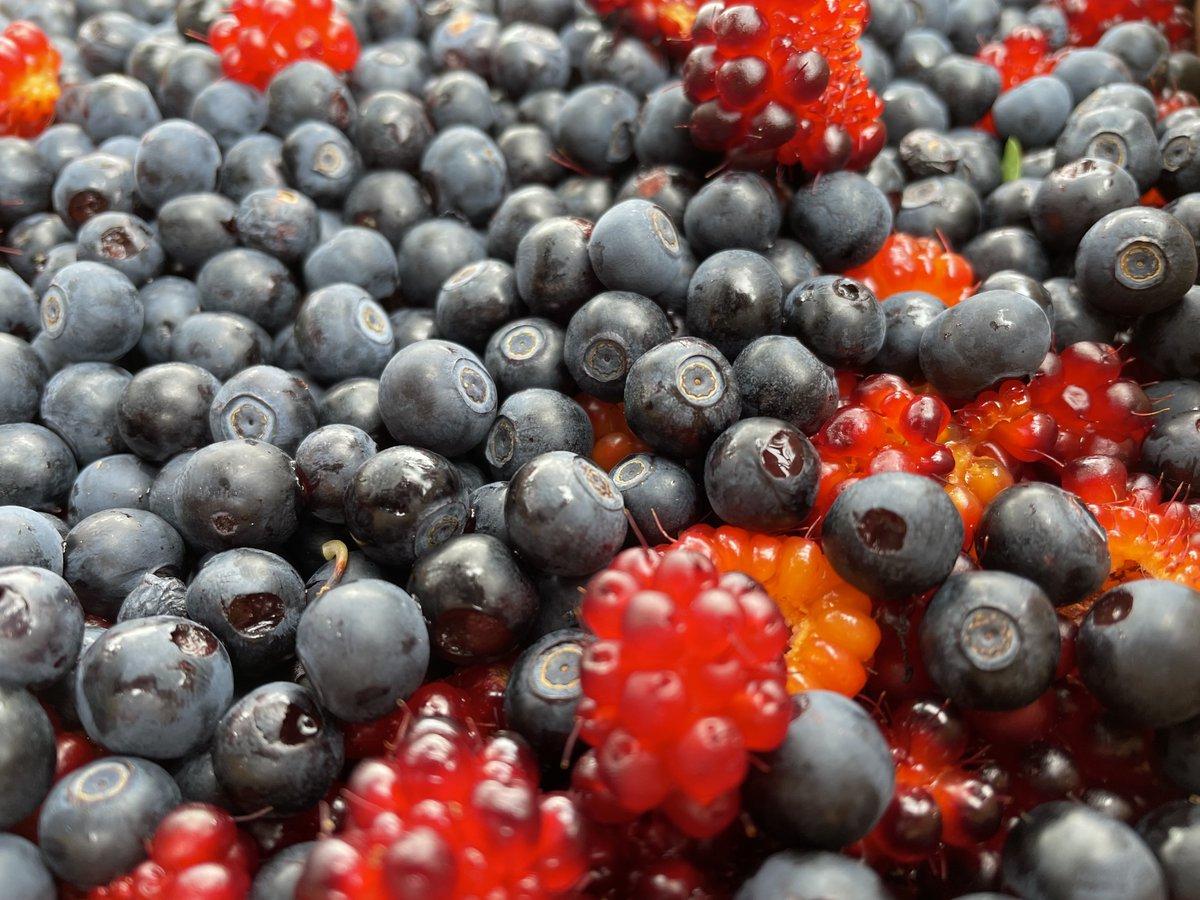 Good berry year https://t.co/1exZBiV7Ro