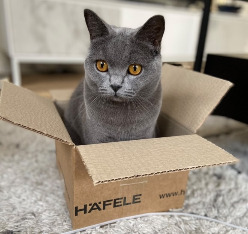 We've heard reports that Häfele boxes make great beds and toys for pets, and now we've seen the evidence! We'd love to see how you reuse your packaging, especially if it's as cute as this.