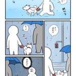 すっと傘をさしている人の元へ・・・!飼い犬とのお散歩中に雨が降ってきたときのお話!