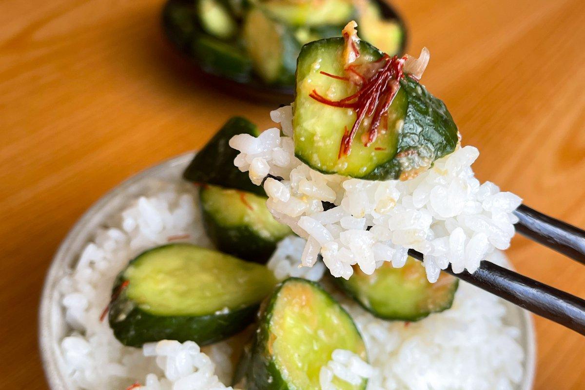 味噌やにんにくの風味でご飯が進みそう!とっても美味しそうな、きゅうりレシピ!