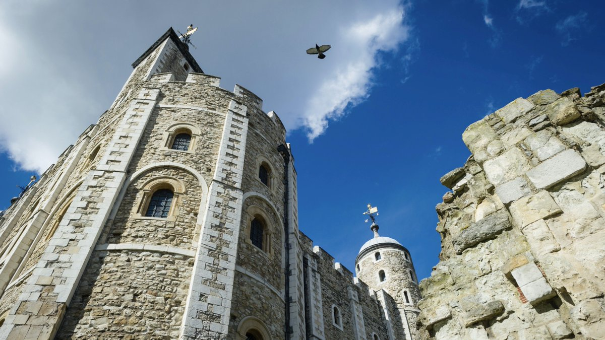 Calling all young time travellers! From today Tower visitors can explore our fortress in a whole new way, with our new family audio tour 🎧 Uncover hidden stories, and meet everyone from Anne Boleyn to an African elephant who once called the Tower home 👉 bit.ly/tol-audioguide
