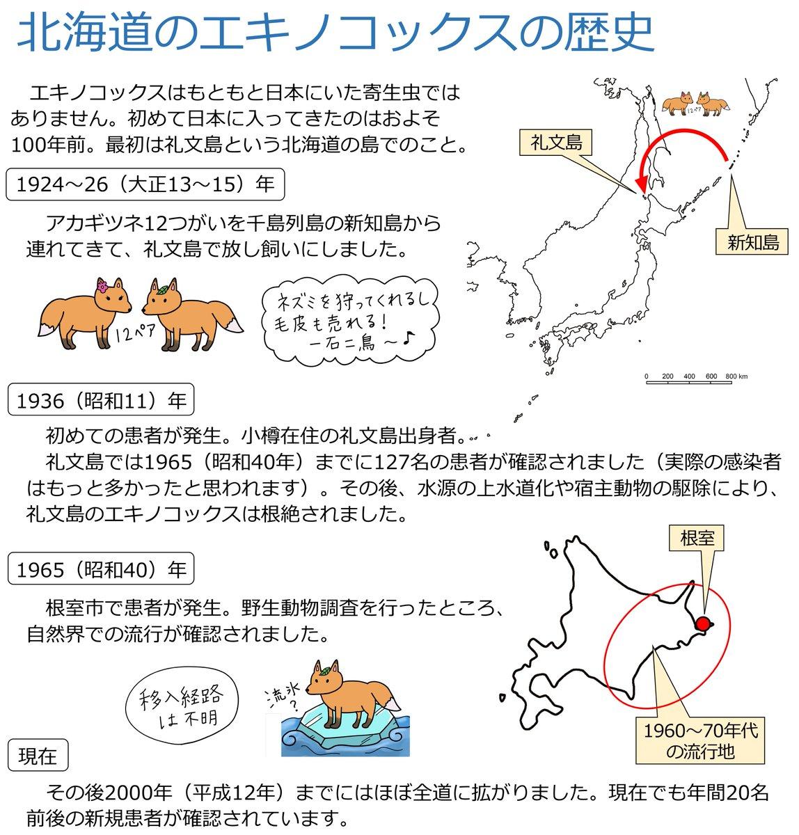 もともと北海道にはエキノコックスは存在しなかった!その悲しい歴史の全貌!