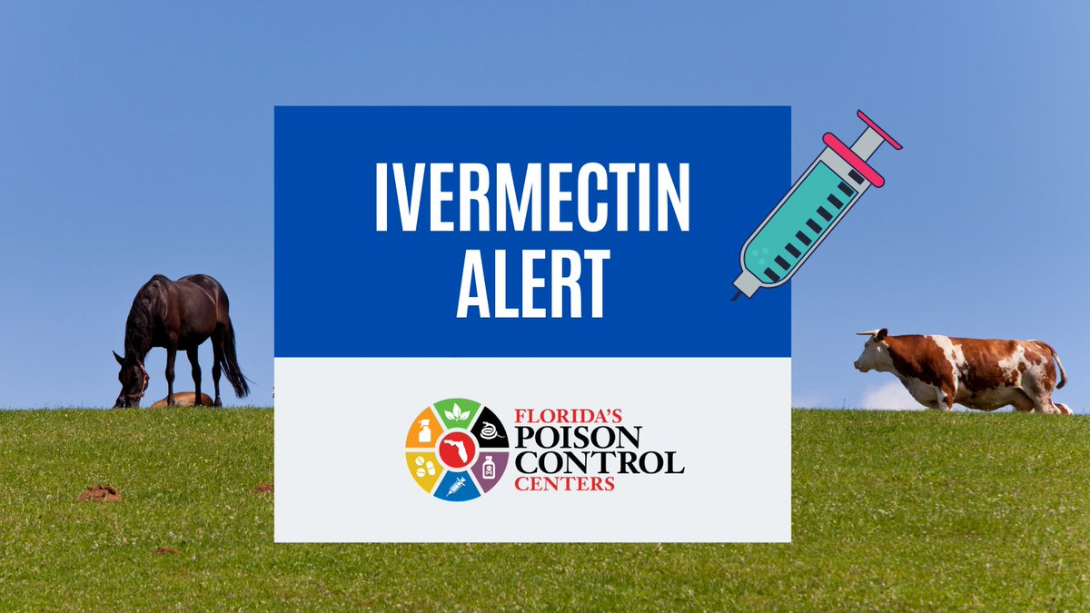 UPDATE: Florida's Poison Control Centers treated a total of 39 patients for ivermectin exposures in August, up from the 27 we reported on August 24th.