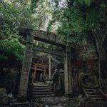 雰囲気があって神妙な気持ちになる。京都に残る廃神社!