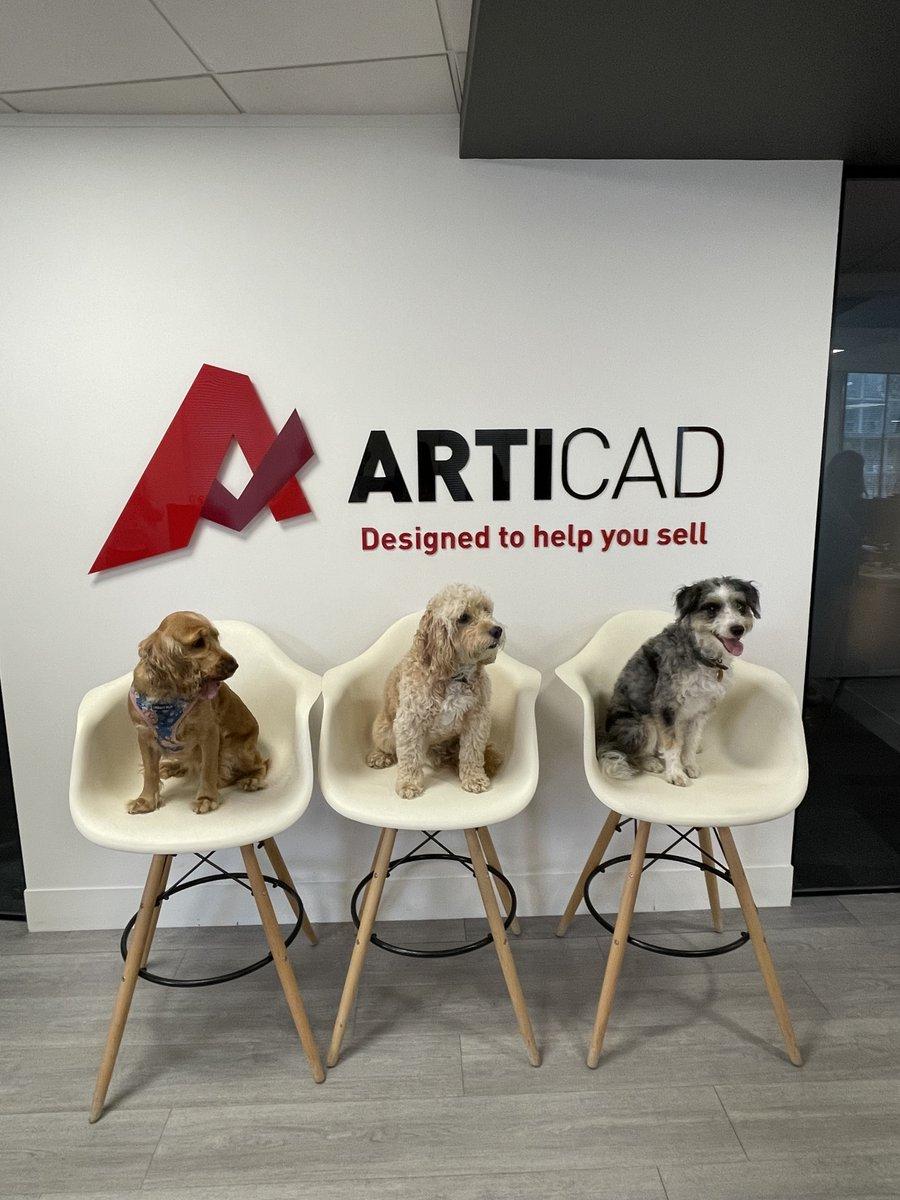 ❤ Happy International Dog Day ❤ #ArtiCAD #InternationalDogDay #InternationalDogDay2021 #officedog