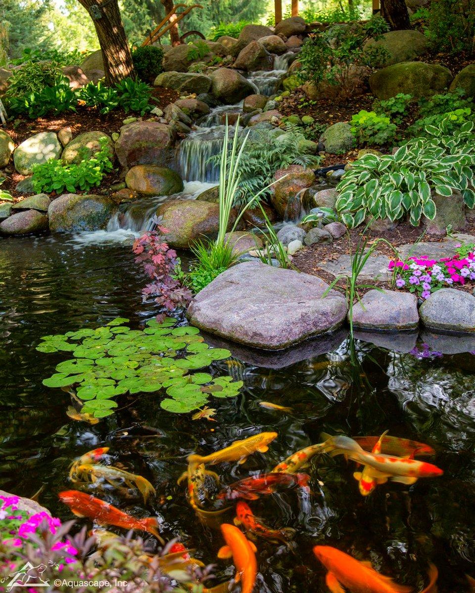 Aquascape Pond Kit Uk