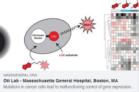 MGH Cancer Center (@MGHCancerCenter) | Twitter