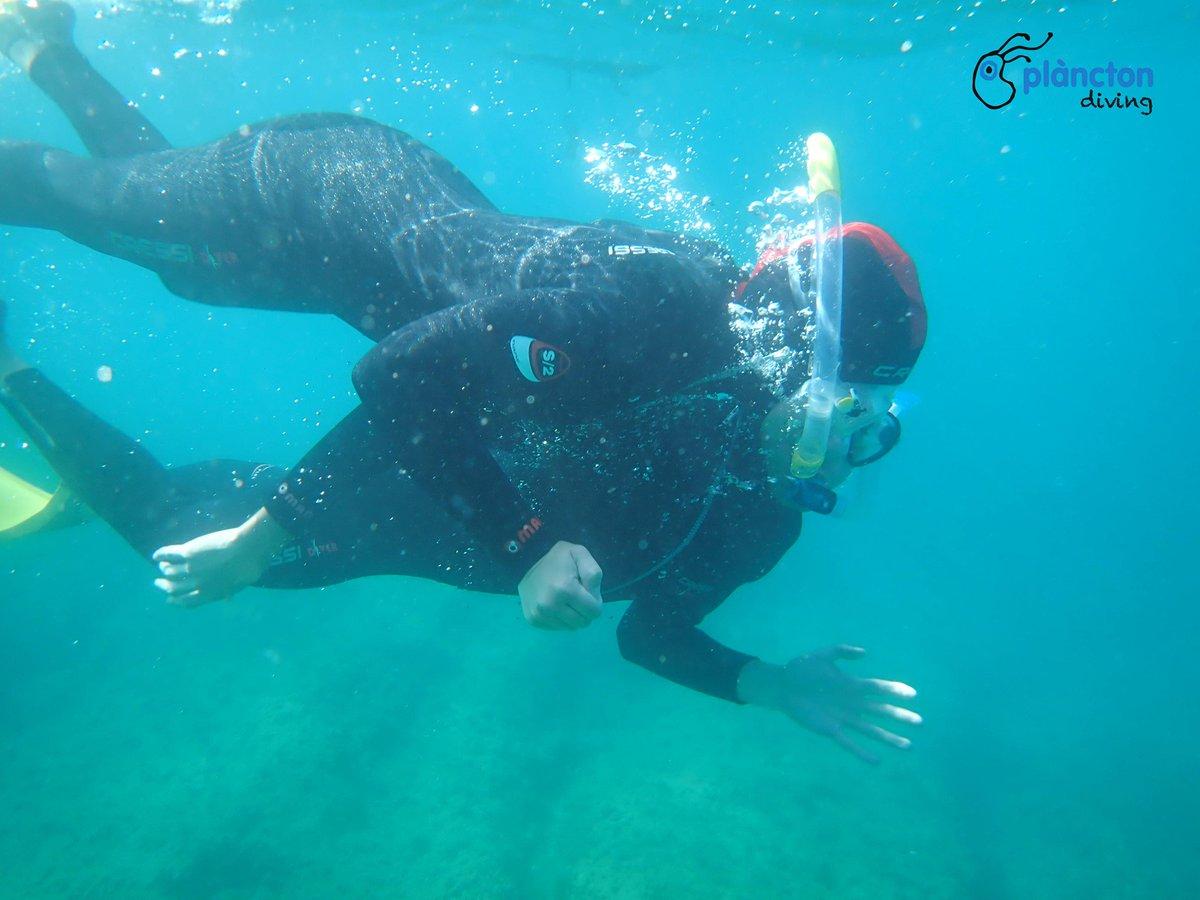 RT @Turismevendrell: Todavía no tienes planes para este verano? #elvendrellrecomienda el Aula Acuática de Masía Blanca. Descubre la Reserva Marina de Masia Blanca mientras practicas snorkeling ℹ +34 977 680 010 / informacio@elvendrellturistic.com