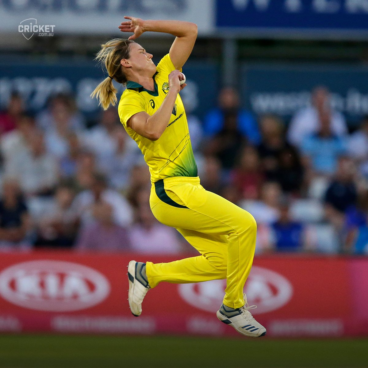 Cricket Com Au On Twitter Ellyse Perry S Ashes In Seven