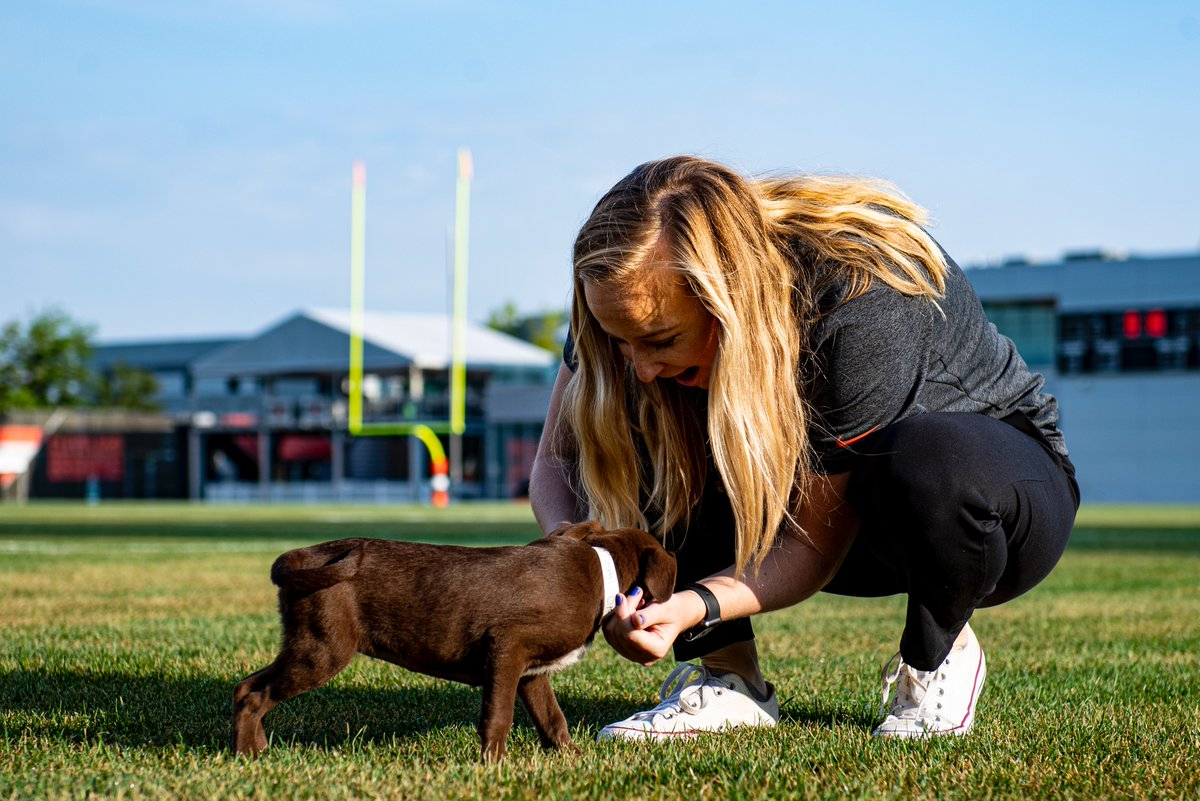 The highlight of my #BrownsCamp mornings: the puppies The lowlight: that I can't take them all home