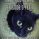 Image for the Tweet beginning: Episode 5 is kitten approved!
