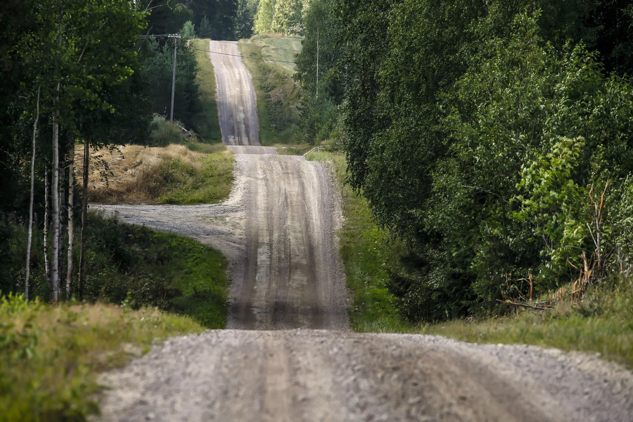WRC: NESTE Rally Finland [1-4 Agosto] - Página 4 EA3I3pMXYAAMkLA