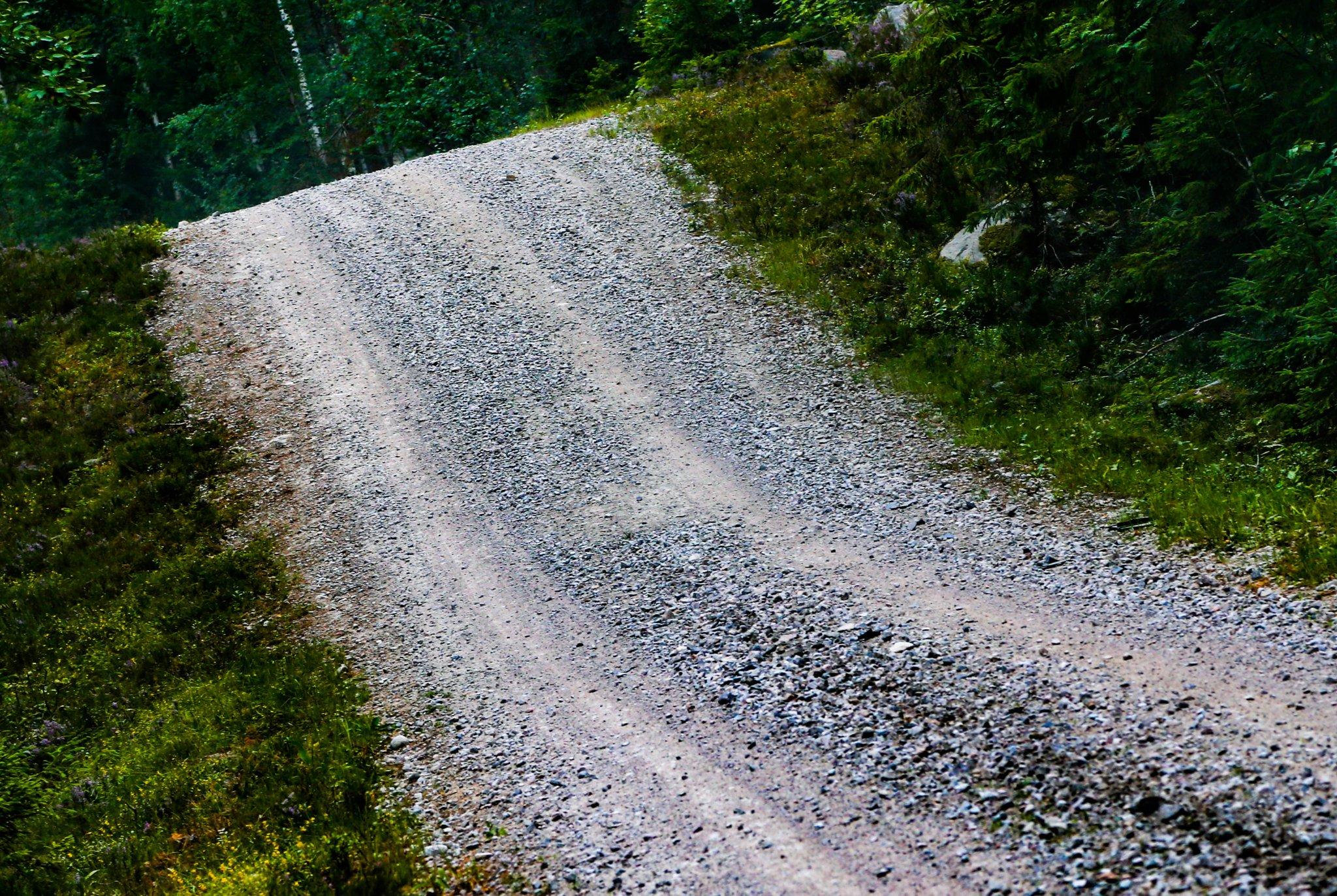 WRC: NESTE Rally Finland [1-4 Agosto] - Página 4 EA3S5vkWsAAgTje