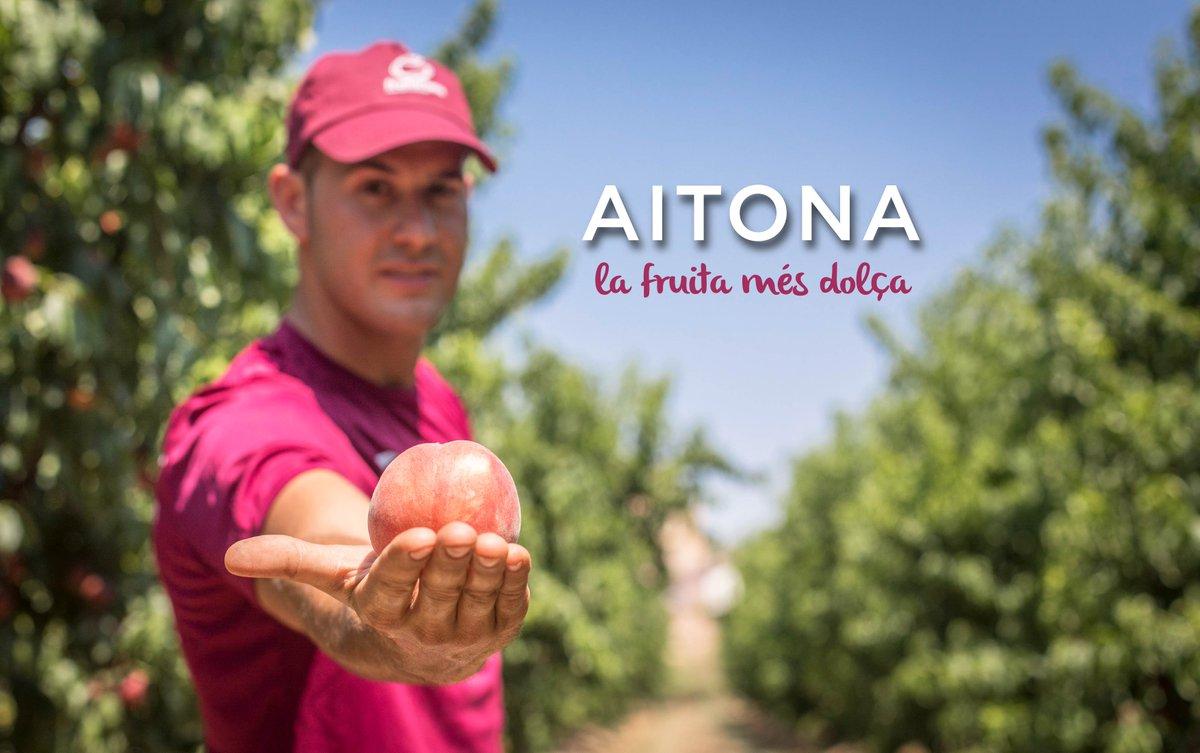 RT @Fruiturisme: 🍑 Els nostres guies pagesos us ho explicaran tot sobre la fruita més dolça del món! Vine a Aitona a collir-la, degustar-la i a conèixer el nostre patrimoni. És l'activitat de l'estiu! ℹ️ bit.ly/2YJKSdh . @aralleida