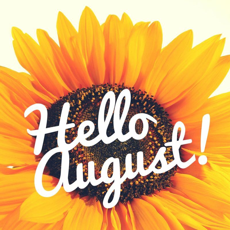 """Miami Shores Village on Twitter: """"Happy first day of August #MSV! Wishing everyone a wonderful month. #MiamiShoresVillage #TheVillageBeautiful… """""""