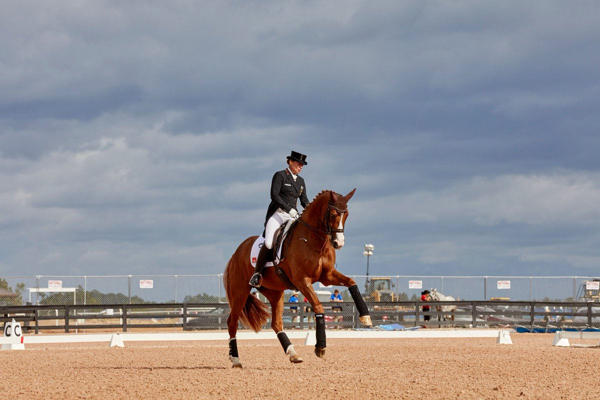 Fédération Equestre Internationale (FEI)   FEI org